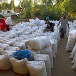 Working Paper 12: Strengthening storage, credit, and food security linkages: The role and potential impact of warehouse receipt systems in Malawi