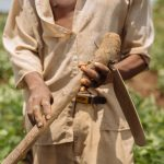Malawi's agriculture extension system at a crossroads: Two perspectives