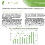 Policy Note 27: Localized public investment and agricultural performance in Malawi: Synposis