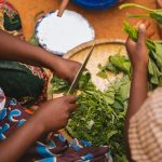 Policy dialogue: Improving Food Security, Diets, and Nutrition through Multi-Sectoral Action