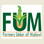 Farmer-led public discussion addresses maize marketing challenges