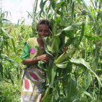 What does it take to scale agricultural technologies in Malawi?